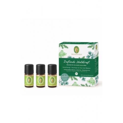 Primavera aroma lékárnička FOREST ENERGY