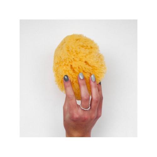 Förster´s přírodní mycí mořská houba Karibská -S/M